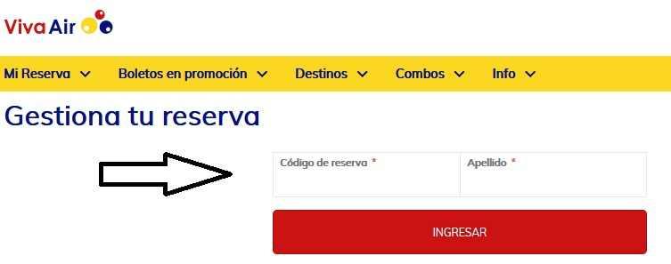 web check in viva air